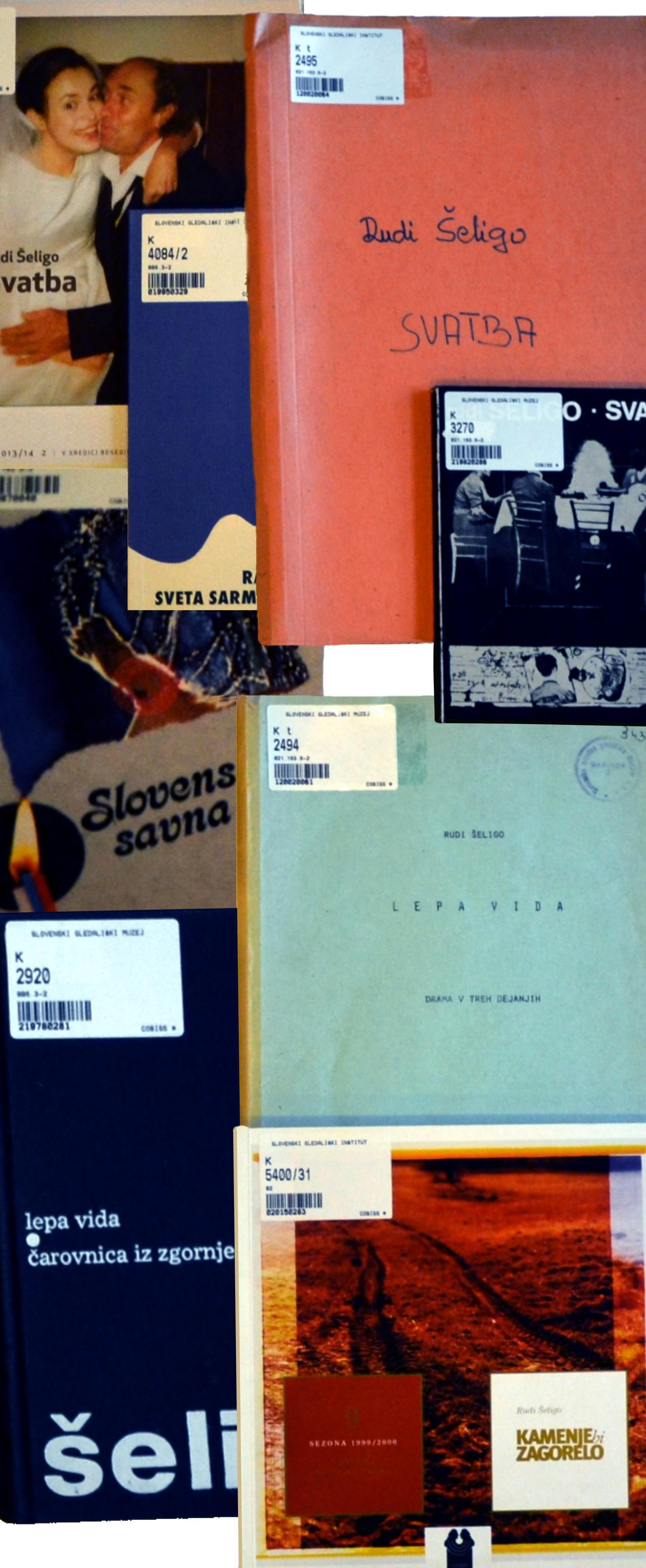 Leta 2014 je minevalo deset let od smrti enega izmed najvidnejših literatov generacije, ki je začela objavljati svoja dela v šestdesetih letih, Rudija Šelige.